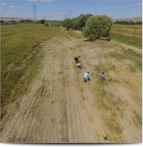 Kultepe Archeological Survey - Survey Line